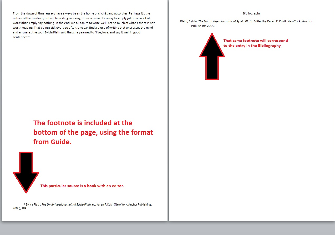 Examples of footnotes in essays